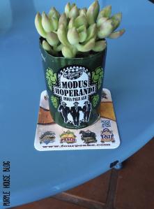 beer planter-01