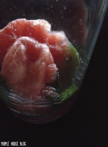 Grapefruit Mint Sparkling Water-04