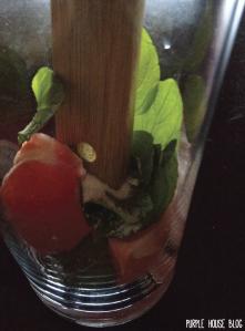 Grapefruit Mint Sparkling Water-05