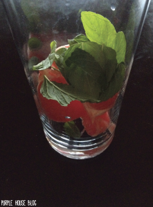 Grapefruit Mint Sparkling Water-07