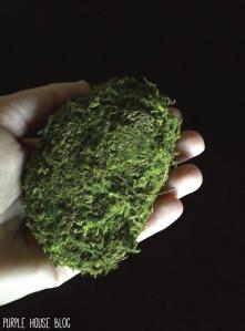 mossy rocks-01