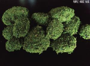 mossy rocks 2-04