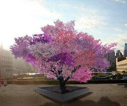 SamVanAken_Tree-of-40-Fruit
