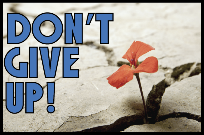 don't give up 2-01