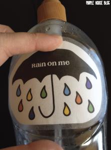 soap waterer-02