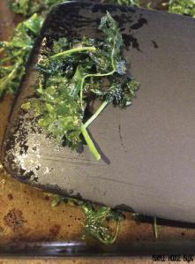 Kale Chips-03