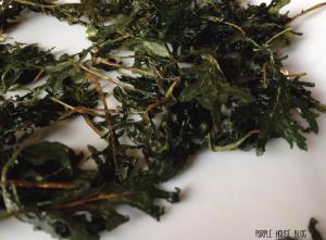 Kale Chips 2-03