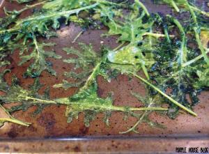 Kale Chips 2-05