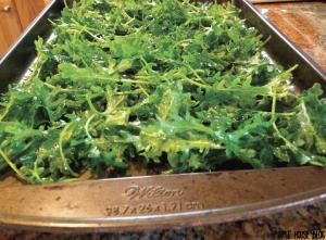 Kale Chips 2-06