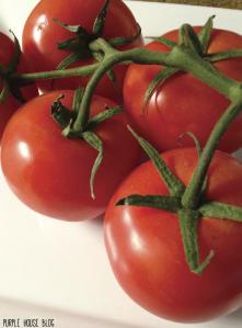 Feta and Tomato Salad 2-01