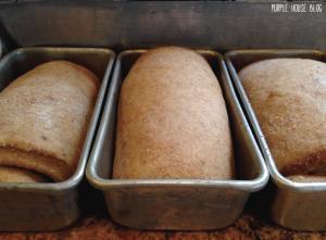 Mini Cinnamon Bread-05