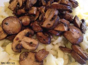 mushrooms-04