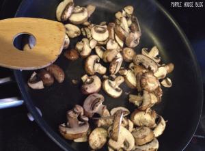 mushrooms-06