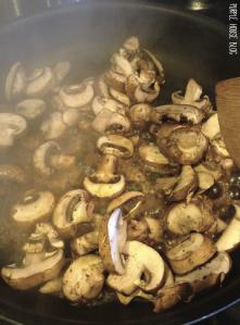 mushrooms-08