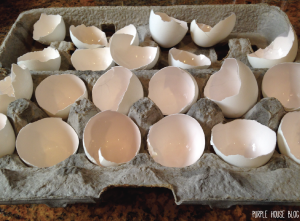 Painted Egg Planters-05