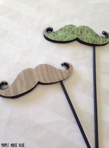 Funny foam mustache-10