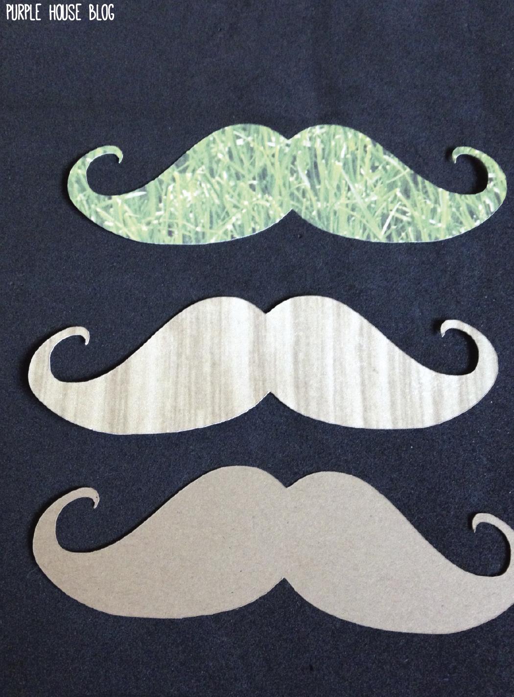 Funny Foam Mustache Purple House Blog